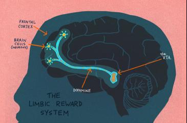 hongerige brein